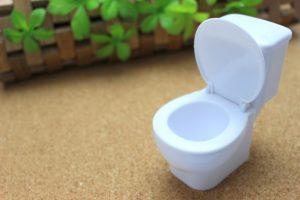 トイレは『タンク式』『タンクレス』どっちがいいの?